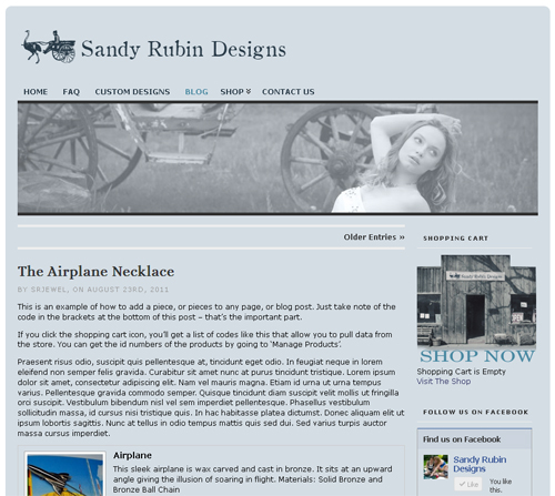 Sandy Rubin Designs